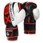 Boxerské rukavice DBX BUSHIDO B-2v7